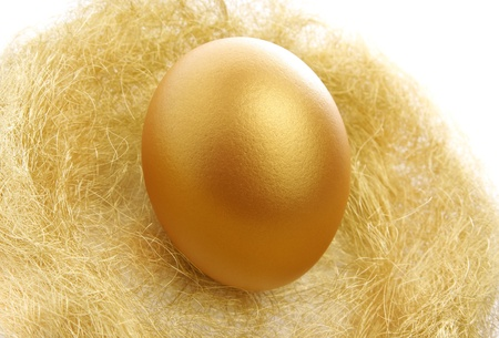 valuable: a single golden egg in the nest isolated on a white background