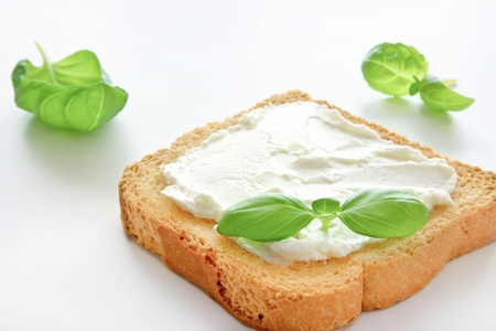 bread slice: A crusty toasted bread whith cheese and a basil leave isolated on a white background
