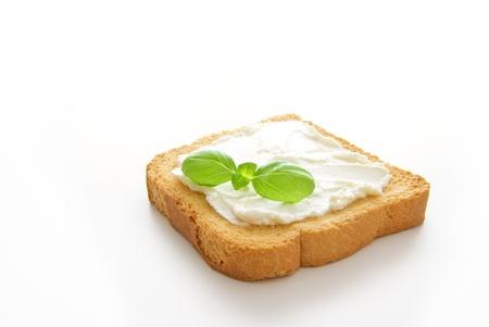 Una costra tostada pan whith queso y una licencia de albahaca aisladas sobre fondo blanco Foto de archivo - 10017786