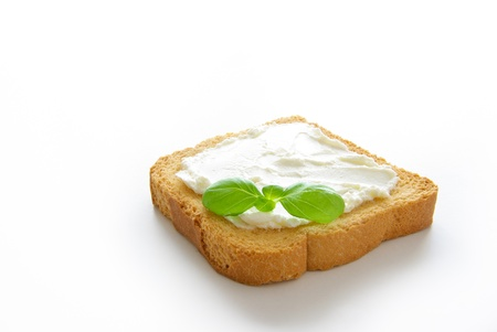 A crusty toasted bread whith cheese and a basil leave isolated on a white background photo