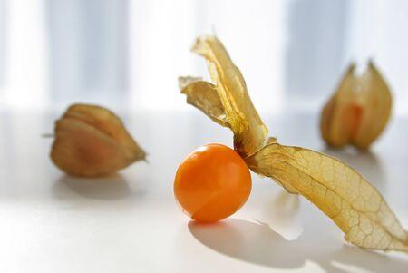 Physalis fruit isloated on a white background photo