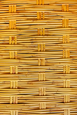 Bamboo pattern  texture as  a background photo