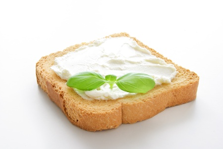 A crusty toasted bread whith cheese and a basil leave isolated on a white background