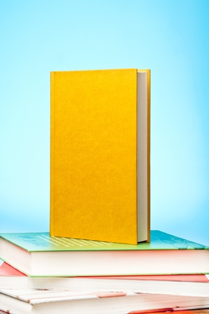 Yellow blank book in upright position Stock Photo - 12099571