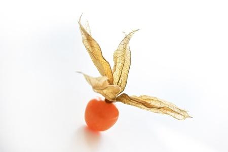 grosella: Physalis la fruta sobre un fondo blanco Foto de archivo
