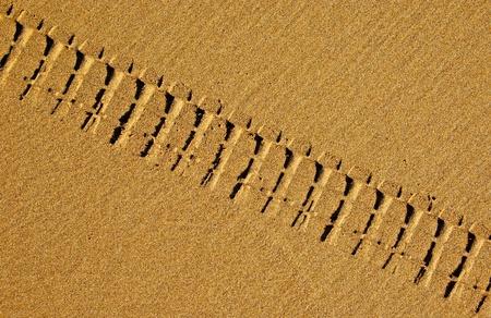 Bike tire tracks in golden sand on the beach photo