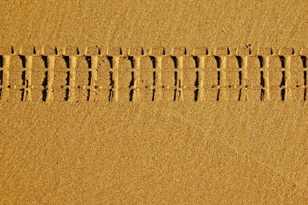 Bike tire tracks in golden sand on the beach Stock Photo