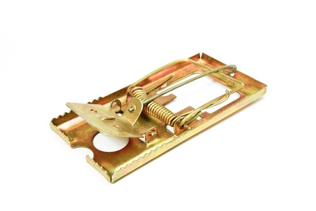 dead rat: Mouse trap on white background.