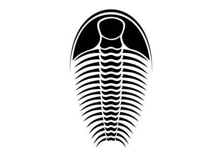 trilobite - black and white vector