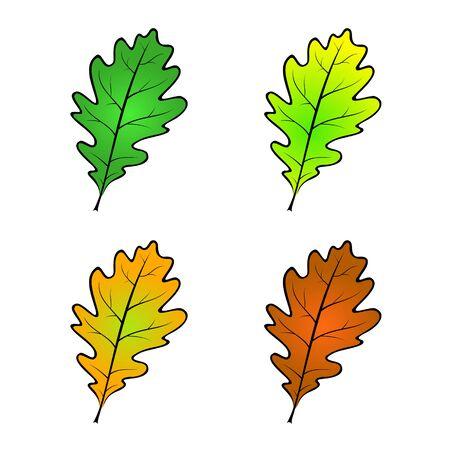 Color variations of an oak leaf vector illustration