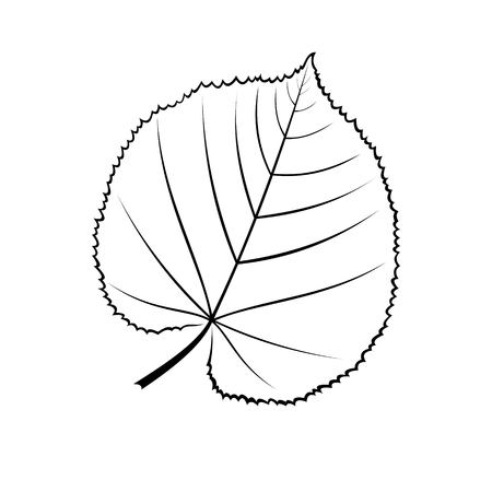 black and white vector illustration of a leaf of linden