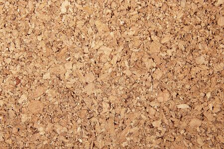 m�dula: Antecedentes de un �rbol cerca de m�dula