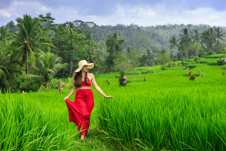 Beautiful young woman in red dress walk in rice terrace. Girl walk at typical Asian hillside with rice farming, mountain shaped green cascade rice field terraces paddies. Ubud, Bali, Indonesia.