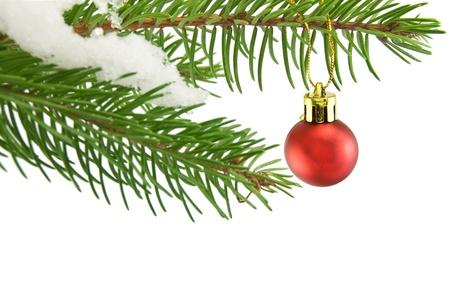 Ball christmas Stock Photo - 16655926