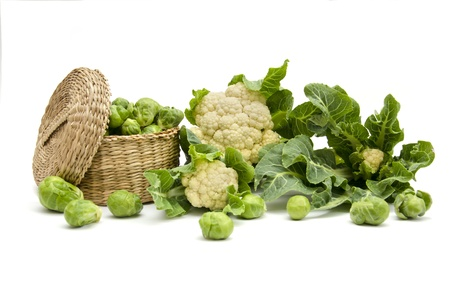 still life of fresh cabbage on a white background