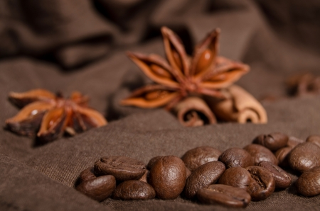 coffee beans and star anise, cinnamon Stock Photo - 17605819