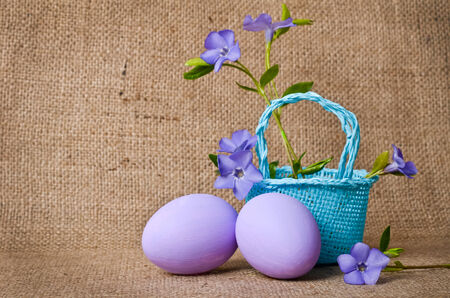 pedicel: Beautiful periwinkles in a blue small basket with easter eggs
