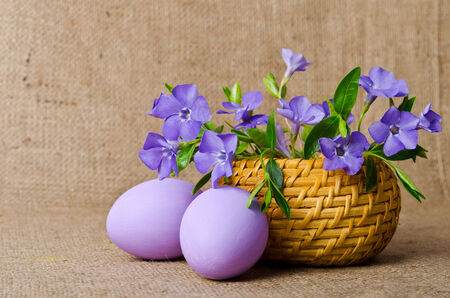 pedicel: Wicker basket with beautiful blue periwinkle and Easter purple eggs
