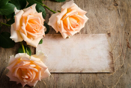burgeon: Delicate cream roses on wooden table