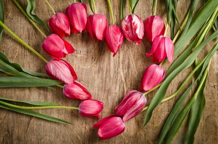 The heart-shaped frame of fresh tulips is laying on an old rustic wooden background photo