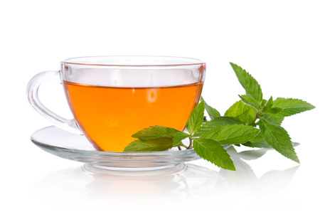 Glass cup of tea with mint on the white background Standard-Bild