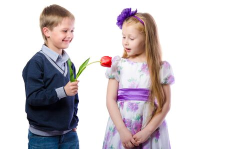 gives: the boy gives the girl a Tulip isolated on white background Stock Photo