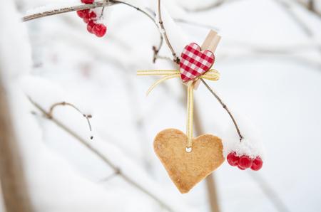 fastened: Snow-covered branch decorated with the Heart-shaped cookie.