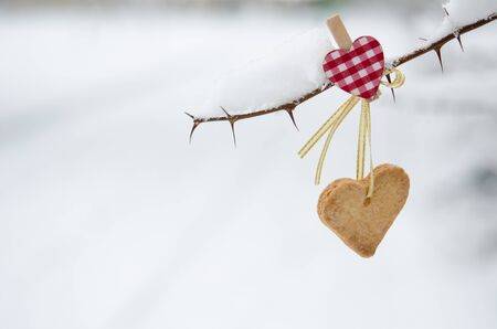 fastened: Snow-covered branch decorated with Heart-shaped cookie. Stock Photo