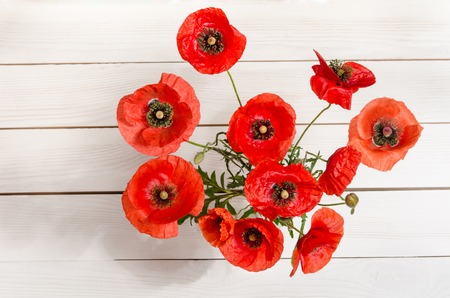 Bouquet of red poppies in glass vase on old white wooden table.top view Stock Photo