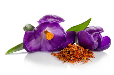 Krokusse Blume mit Haufen von Safran isoliert auf weißem Hintergrund