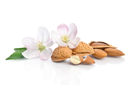 Paradise flower with almond nuts isolated on white background