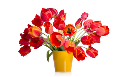 Beautiful bouquet of colorful tulips in yellow pot isolated on white background Imagens - 82749480