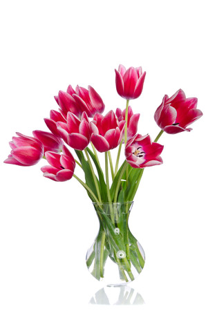 Bunch of beautiful bright yellow tulips in a pot on burlap background Imagens - 82749482