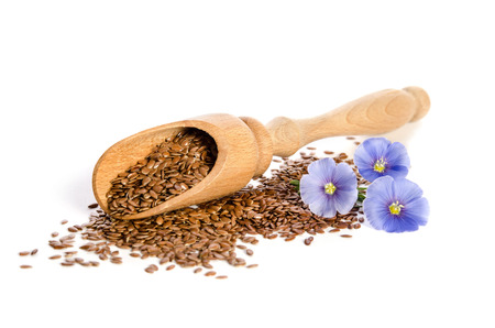 Flax seeds in the  wooden scoop and beauty flowers isolated on white background. Phytotherapy.
