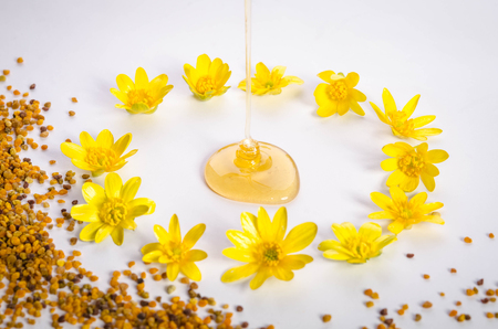 Pollen and poured honey with flowers around