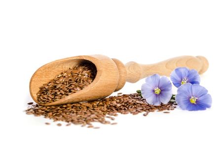 Flax seeds in the wooden scoop and  beauty flowers isolated on white background. Banco de Imagens