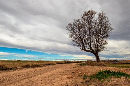 the way with the tree cloud & blue sky Stock Photo