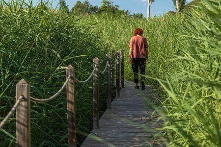 woman walking in a garden through a wooden path Stock Photo