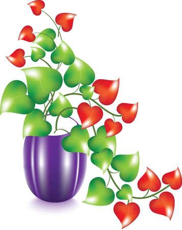 Vase with flower heart vector Illustration