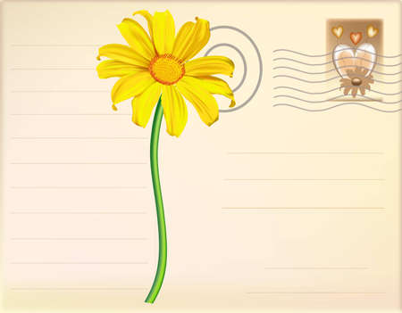 Post Card Flower vector Vector