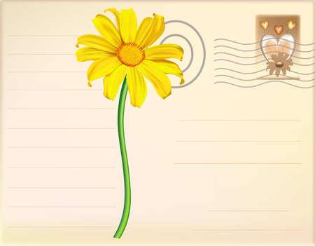 Post Card Flower vector Illustration