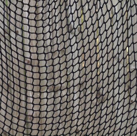 netting: sports netting
