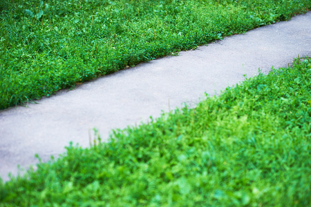 park path: Diagonal park path with green grass background
