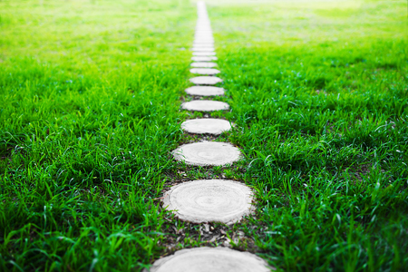 footway: Vertical forest path footway on green grass background Stock Photo