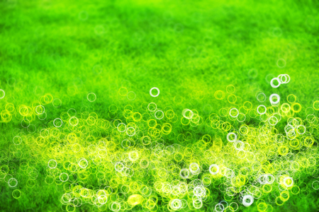 grassplot: Green lawn with light leak bokeh background