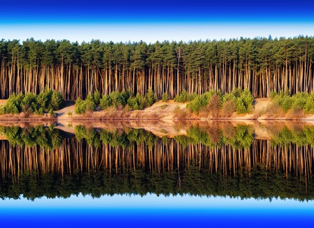 river side: Horizontal vivid river side dramatic forest reflection background backdrop Stock Photo