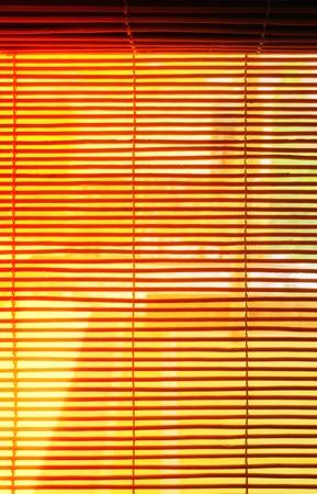 venetian: Wooden venetian blind shutter