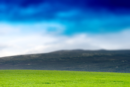 oslo: Norway summer meadow with hills landscape background hd