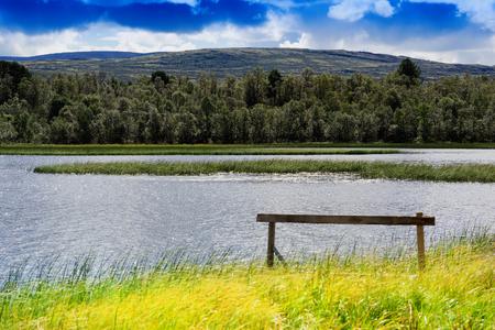 turismo ecologico: Entrando limpia territorio ecológico fondo del paisaje hd
