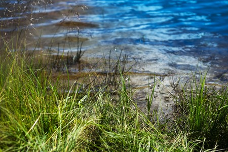 oslo: Norway grass near lake background hd